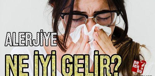 alerjiye ne iyi gelir