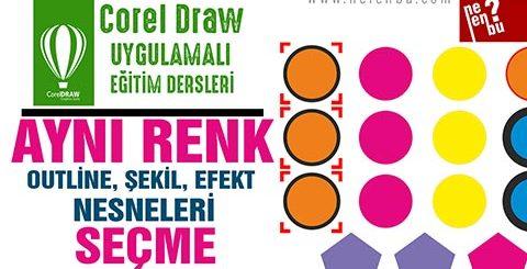 Aynı Renkleri Seçme - Corel Draw Dersleri
