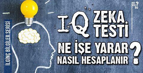 IQ Zeka Testi Nasıl Hesaplanır, Ne İşe Yarar? - İlginç Bilgiler Serisi